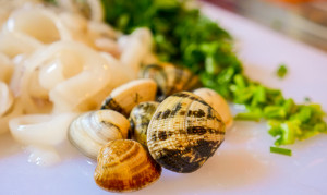 Clams and Calimari on cutting board. J. Starling photography food photography